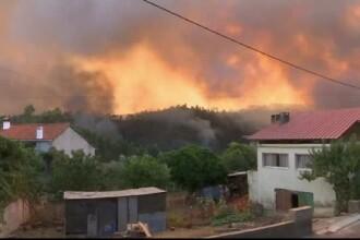 Portugalia, devastată de incendii. Zeci de oameni au murit