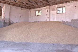 Milioane de tone din recolta României, trimise în Europa sau în țările arabe