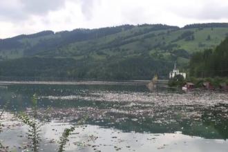 """Omenirea și-a consumat resursele pentru acest an, dar face puţin pentru planetă. România, situaţie """"unică"""" în Europa"""