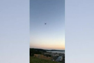 Cine e bărbatul care a furat un avion de pasageri şi apoi s-a prăbușit pe o insulă.