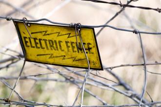 Fiica unui celebru fotbalist a murit electrocutată de gardul electric al casei