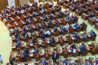 Comisiile au respins proiectul PNL privind alegerea primarilor în 2 tururi de scrutin