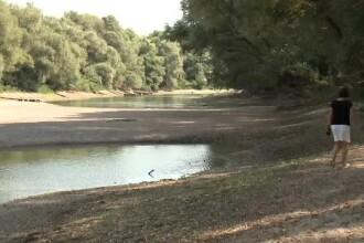 Dunărea, pe cale să sece. Ţările în care fluviul nu mai este navigabil
