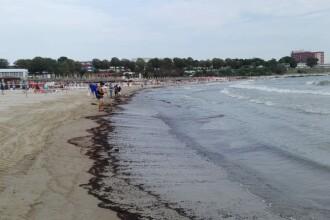 O porţiune de plajă din Mangalia a fost închisă. Descoperirea autorităților