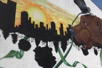 """Artă stradală la Târgu Mureș: """"Am adus ursul într-un spațiu utopic"""""""