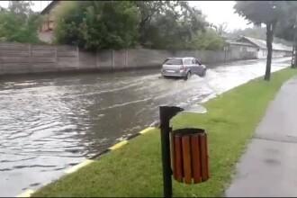 Moreni și Fieni, inundate în câteva minute. Numere de înmatriculare, pierdute în apă