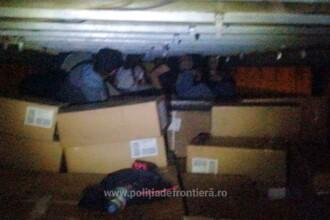 Familii de irakieni, aduse în România în cutii de carton. Unde voiau de fapt să ajungă