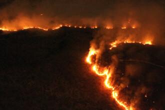 Decizia luată de liderii Summitului G7, privind incendiile din pădurea amazoniană