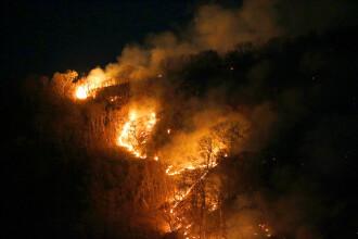 Decizia președintelui Braziliei pentru a pune capăt incendiilor din Amazon