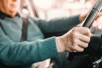 Cum a fost prins un șofer german, care conducea fără permis de 10 ani