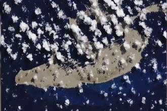 Misterul insulei plutitoare care se îndreaptă spre Australia. Descoperirea făcută de NASA