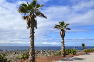 """Interviu cu un român care lucrează """"de acasă"""" din Tenerife. Ce cheltuieli are pe insulă"""