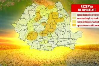 """Zonele din România cu secetă extremă. Fermierii, disperați: """"Căldurile au fost năucitoare"""""""
