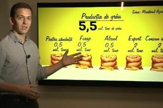 Recolta românească de grâu, devastată de secetă. Cum vrea ministerul Agriculturii să-i ajute pe fermieri