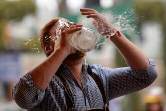 România, în topul celor mai mari producători de bere din UE. Cantitatea uriașă pe care o fabricăm