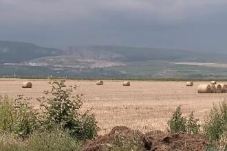 Tot mai mulți români aleg să-și dea pământul în arendă.