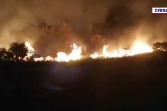 Incendiu puternic de vegetație în Brăila. Flăcările s-au extins cu repeziciune pe 30 de hectare