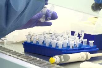 China a depistat urme de coronavirus într-un lot de aripioare de pui congelate provenite din Brazilia