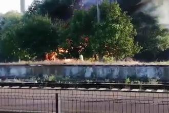 Incendiu puternic în apropiere de Gara Vaslui. O tragedie, evitată în ultima clipă