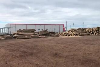 Controale la centre care valorifică materiale lemnoase. Un administrator e cercetat penal
