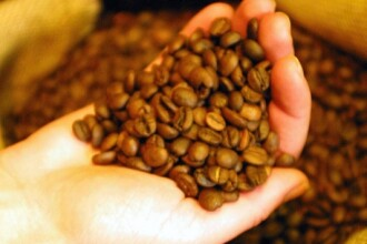 Cafeaua creste performanta fizica cu 12%