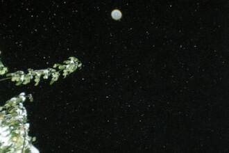 Semn divin sau iluzie optica? Chipul lui Isus pe un fulg de zapada