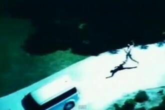 VIDEO. Hot complet dezbracat, prins de un caine politist