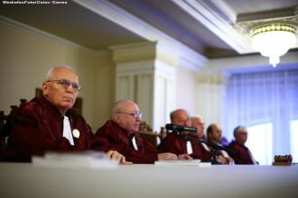 Judecatorii CC au decis: Legea privind eutanasierea cainilor comunitari NU ESTE constitutionala