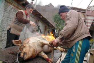 Ziua in care se taie porcul. Cum ne asiguram ca mancam carne care nu ne pune sanatatea in pericol