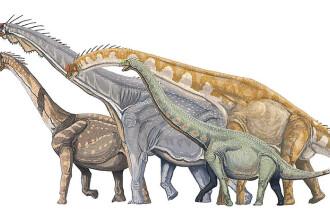 Doua specii de dinozauri au fost descoperite in Peninsula Arabica