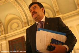 Senatorul PSD Toni Grebla a fost votat de Senat in functia de judecator al Curtii Constitutionale