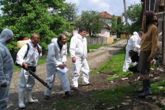 Alerta la granita cu Romania. A fost descoperit un caz de infectie cu H5N8, o tulpina a virusului gripei aviare
