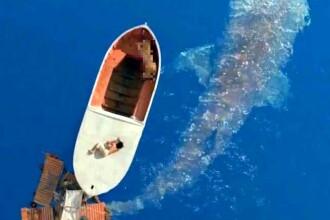 De necrezut. A supravietuit patru luni plutind pe Oceanul Atlantic si a ucis singur un rechin