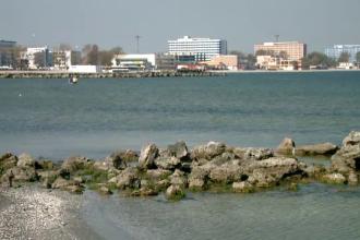 Proiectul care va readuce la viata Marea Neagra. Cum functioneaza cele 8 recife artificiale instalate in larg, la Constanta