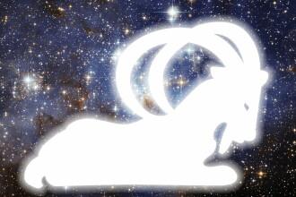 HOROSCOP 2015. Neti Sandu prezinta previziunile pe 2015 pentru cei nascuti in zodia Capricorn
