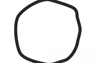 In imagine este sau nu un cerc? Testul psihologic realizat de cercetatorii americani care arata ce optiuni politice ai
