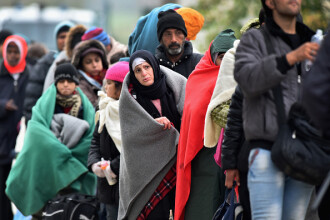 Bild: Circa zece refugiati din Germania au pasapoarte falsificate siriene, similare cu cele ale teroristilor din Paris