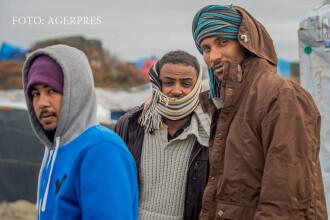 Presedintele unei tari UE, despre refugiati: