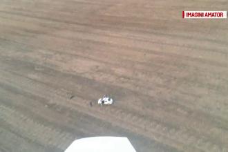 Spargator de locuinte din Timis, prins dupa ce a fost localizat din avion. Momentul retinerii, filmat de sus