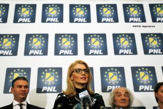 """Gorghiu, PNL: """"Super legiferare! Dragnea, încă puțin și deschizi șampania pentru amnistia asta mascată!"""""""