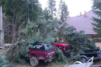 Serviciul Salvamont Neamt a ramas fara masini, in plin sezon turistic. Un brad a provocat pagube de 200.000 de lei