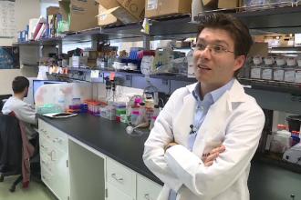 Născut la Aiud, caută leacul pentru autism la Stanford.Cercetătorul care obține porțiuni de creier din simple celule de piele