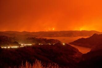 """Incendii de vegetație în California. Pompier: """"Lucrurile au ieșit de sub control"""""""