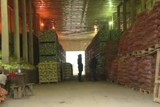 Iarna aceasta vom avea legume și fructe autohtone. Agricultorii au făcut investiții cu fondurile UE