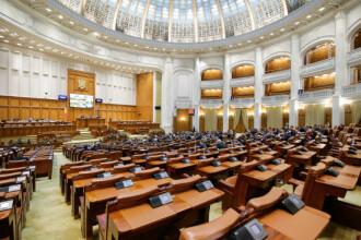 Comisia juridică din Senat a respins proiectul legislativ privind parteneriatul civil