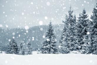 Cod galben și portocaliu de vânt şi ninsori în zona montană. Prognoza meteo de Crăciun