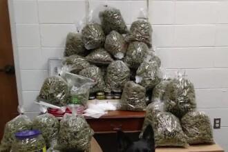 Scuza inventată de doi bătrâni când au fost prinși cu 30 de kilograme de marijuana