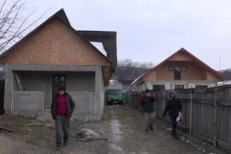 Stare de alertă într-o localitate din Bacău. Oamenii cer măsuri după ce urșii le-au omorât animalele