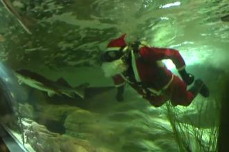 Moș Crăciun și-a făcut apariția într-un muzeu marin din Lituania. Ce le-a spus vizitatorilor