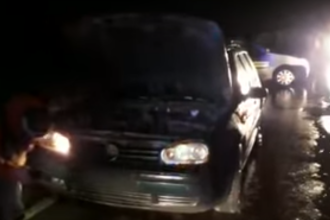 O maşină a lovit un urs pe Drumul Judeţean 106, în județul Sibiu. VIDEO